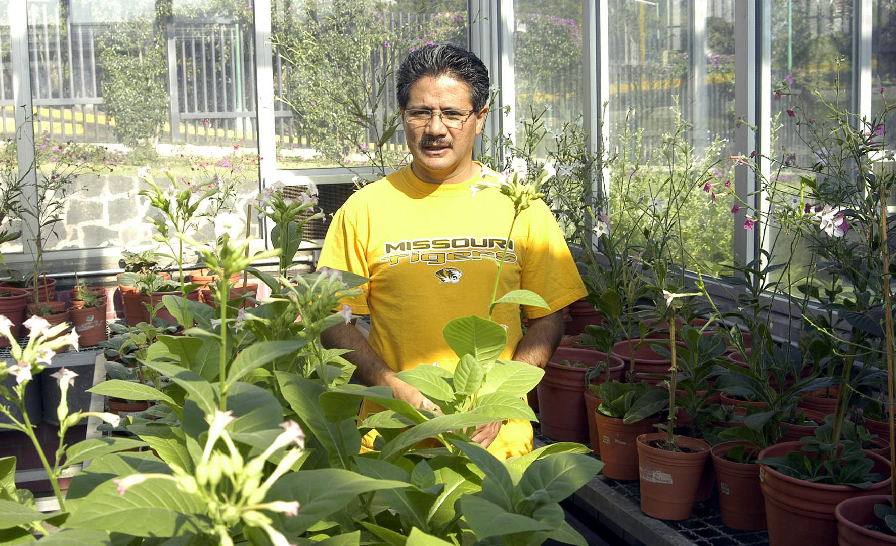 Bolet n de prensa for Incompatibilidad en plantas