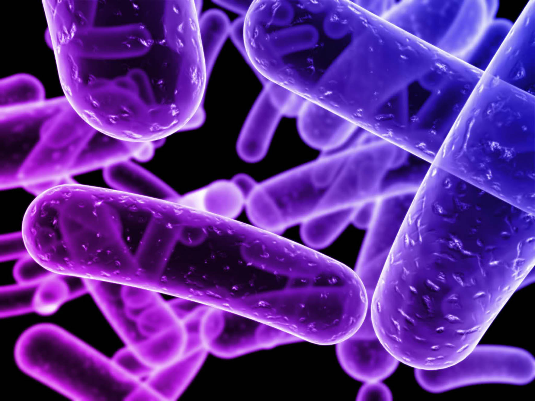 general bacteria and use of a Chapter 5, infection control,  bacteria are very small and can only be seen with the aid of  bacilli and spirilla bacteria are both motile and use slender,.