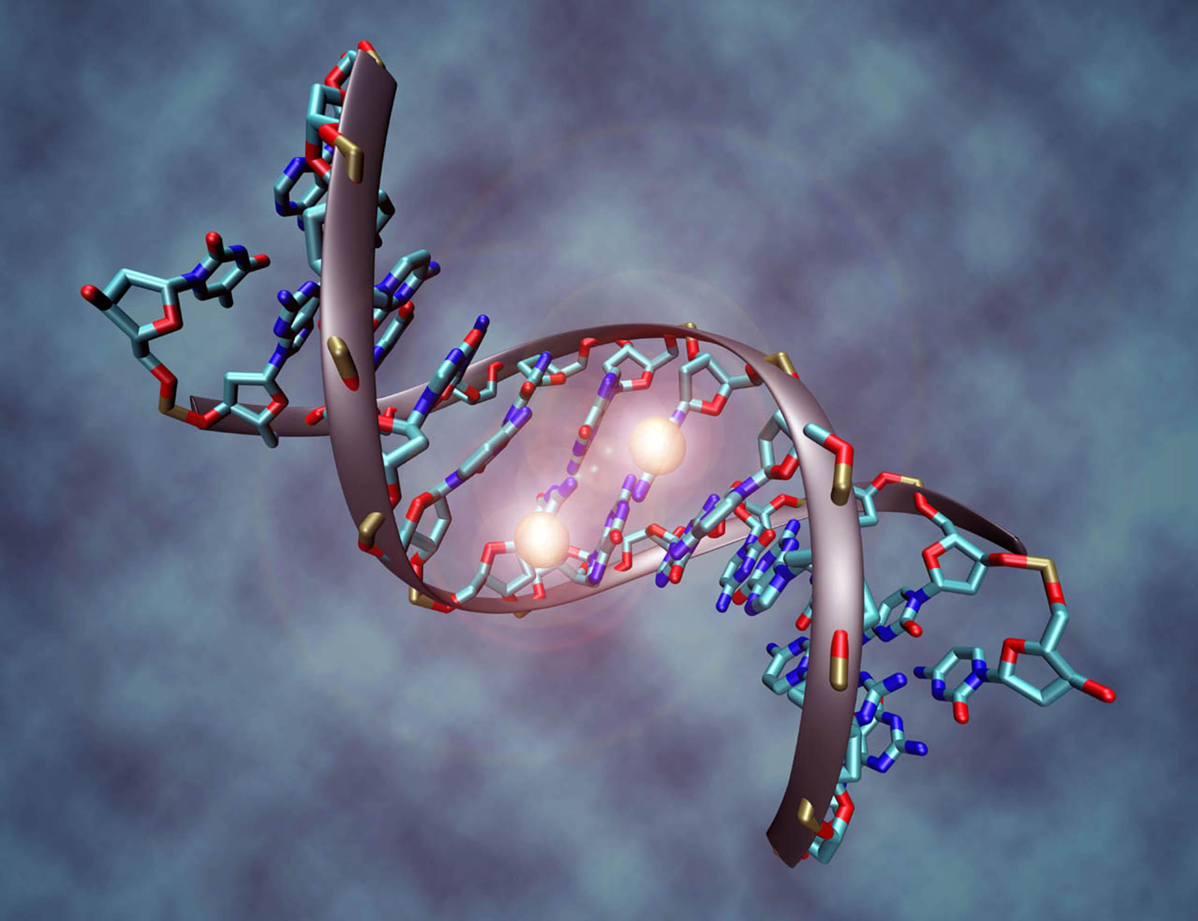 El ADN tiene una huella vibracional única - UNAM