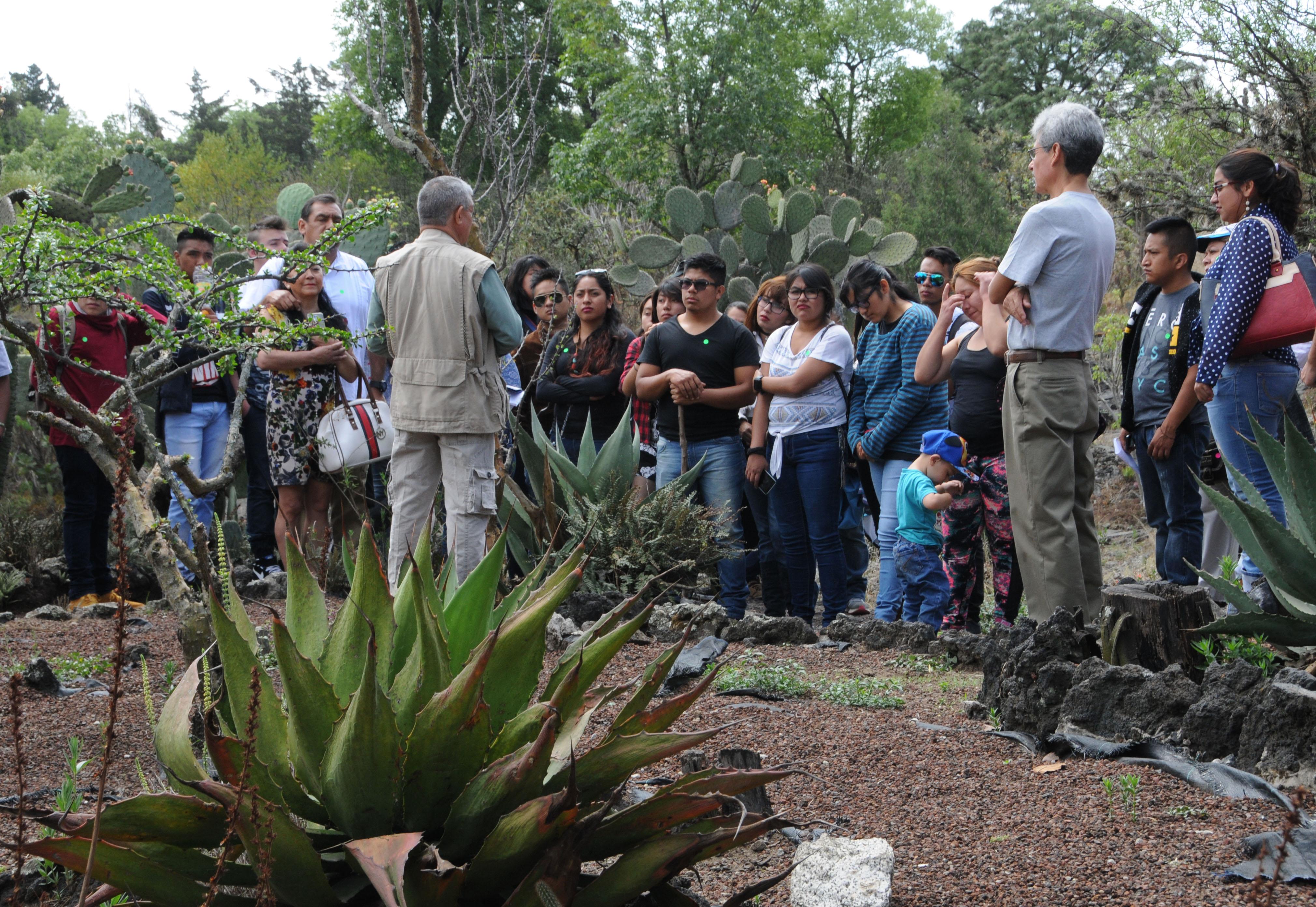 Celebra la unam el 12 d a nacional de los jardines bot nicos for Talleres jardin botanico